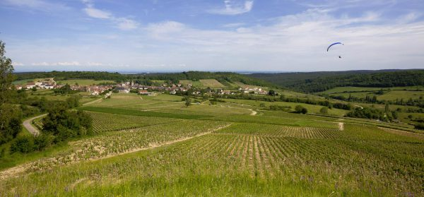 Domaine Philippe TRENET<br> Meloisey